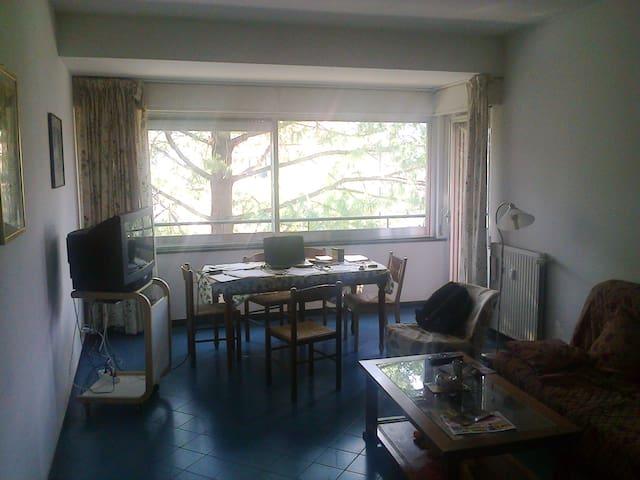 POGGIO - San Salvatore - Appartement