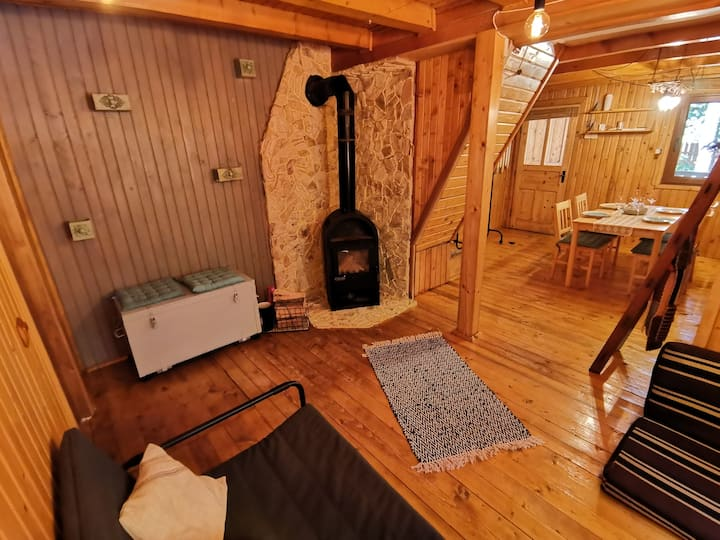 Tiny wooden cottage