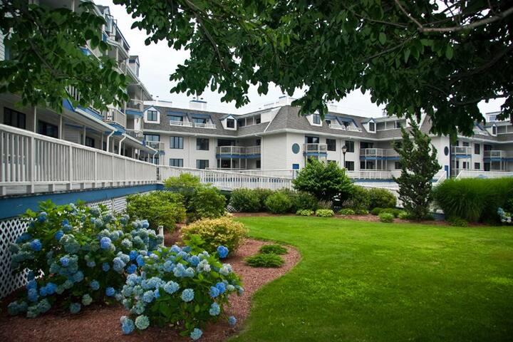The Wellington Newport Rhode Island