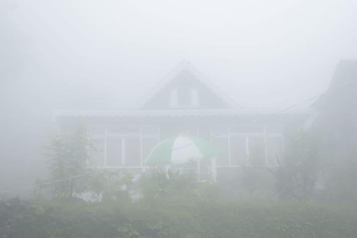 lamahatta stay Darjeeling