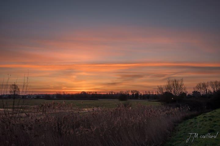 Levé du soleil sur le marais