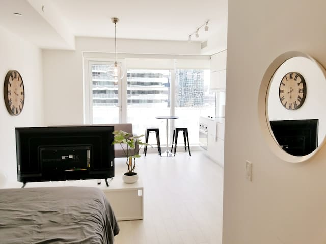 1 Br Bachelor - Eaton Centre - Yonge and Dundas