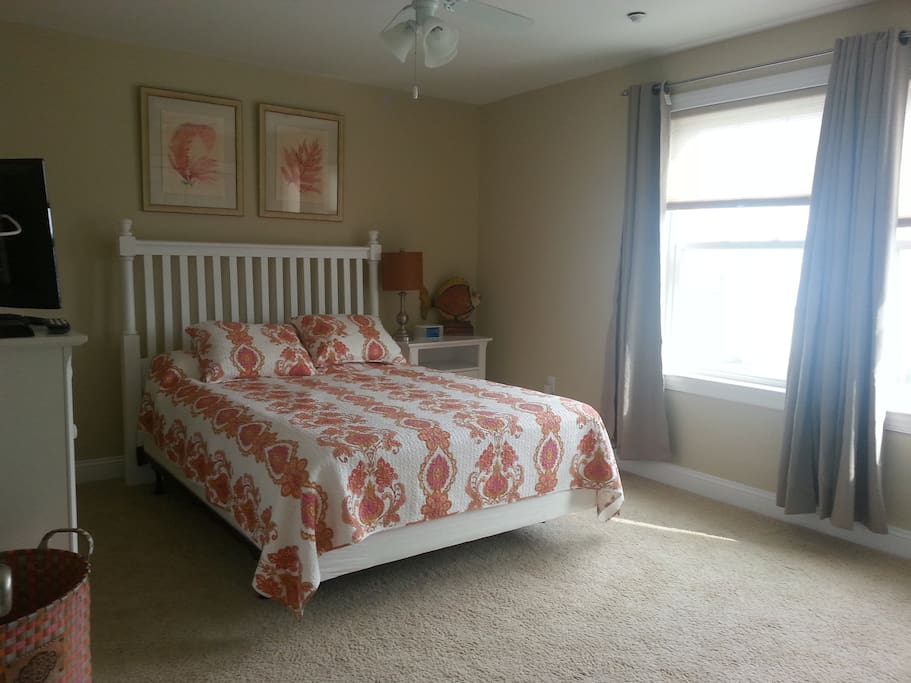 The queen sized bedroom, ample space and large closet.