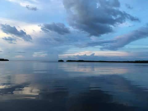 Pura Vida - Tropický únik s výhľadom na záliv Tampa