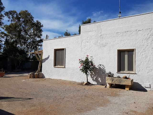 Casa Vacanze Torre Lapillo   Appartamento Sirena