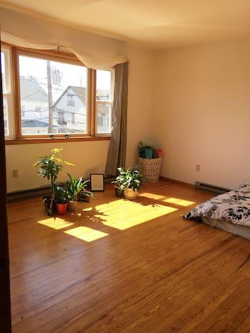 Sunny, clean, spacious 1 bedroom