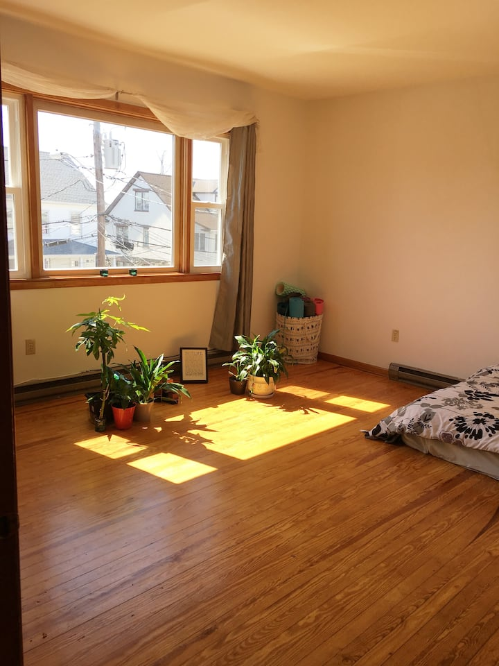 Sunny, clean, spacious 1 bedroom