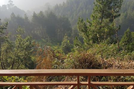 Villa Kayu in Jungle (Villa 2, Superior)
