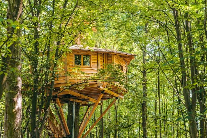 Cabane SPA Osmose pour 2 personnes - Raray - Casa na árvore