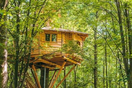 Cabane SPA Osmose pour 2 personnes - Raray - 树屋