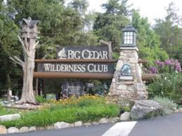 Resort, 2 Bdrm at Big Cedar; NO CLEANING FEES