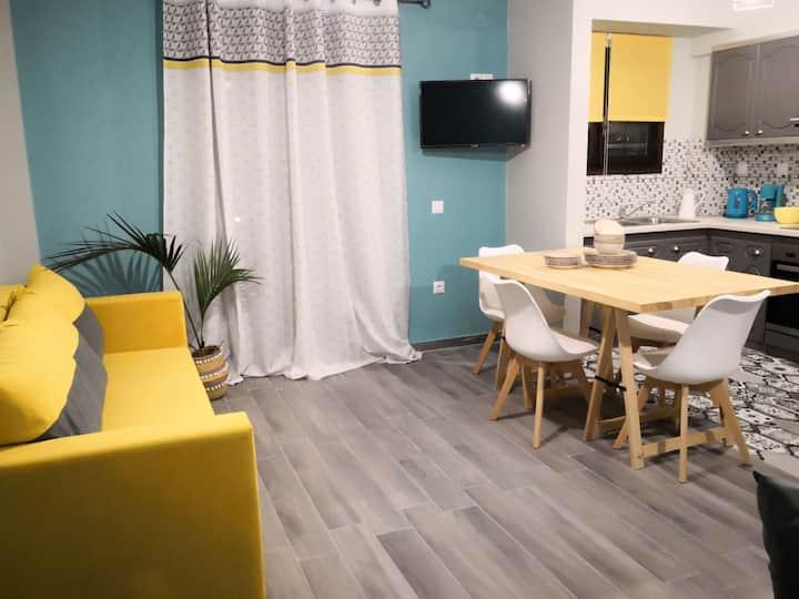 Mosichlos Lemnos, spacious apartment.