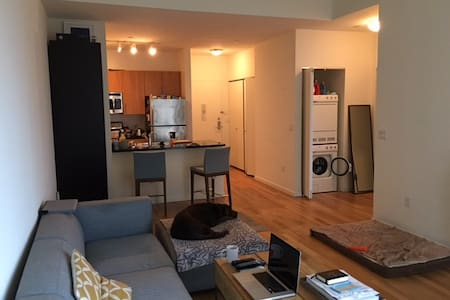 Hi-Rise Room with Manhattan View / Dog Lovers Only - Queens - Apartment