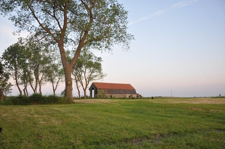 Groot Noordhof - Koekoeksnest