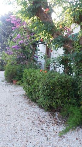 Casa indipendente in campagna - Porto Azzurro - Huis