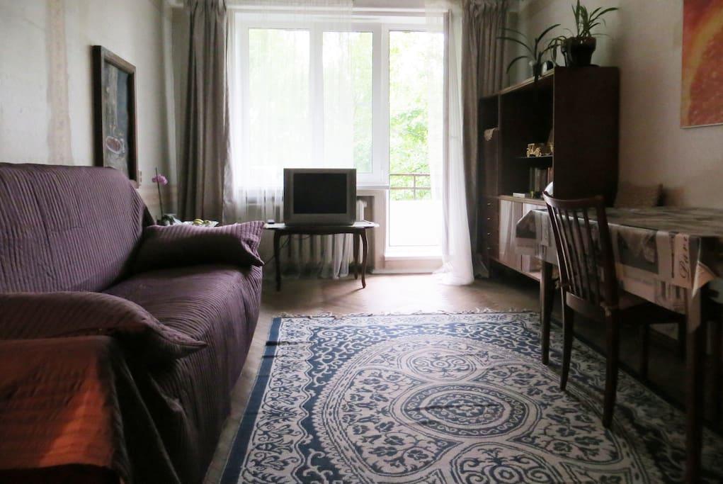 Просторная, светлая комната с большим окном и балконом. Диван-кровать, стол со стульями, шкаф с библиотекой и настольными играми, шкаф для одежды, кресло, журнальный столик и телевизор