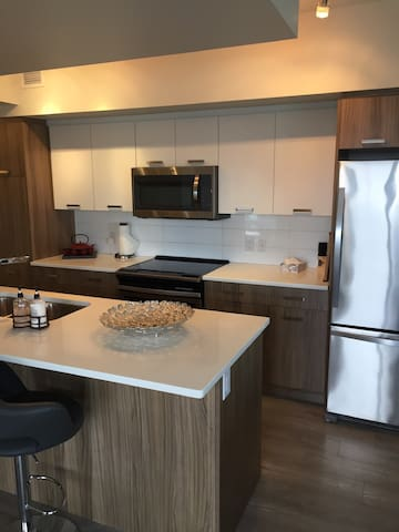 Full 3 Bedroom Condo in the Heart of Downtown