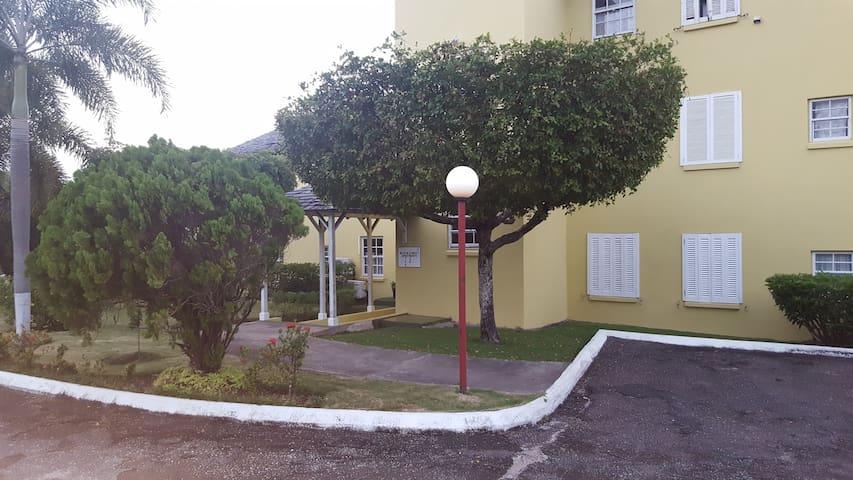 Sea Palms, Tower Isle-Beachfront Penthouse Apt
