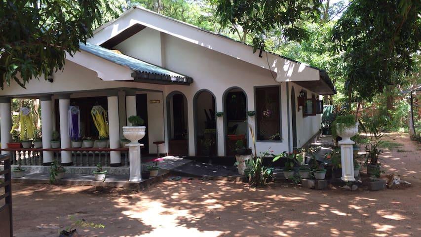 Deluxe Double Room - dambulla - House