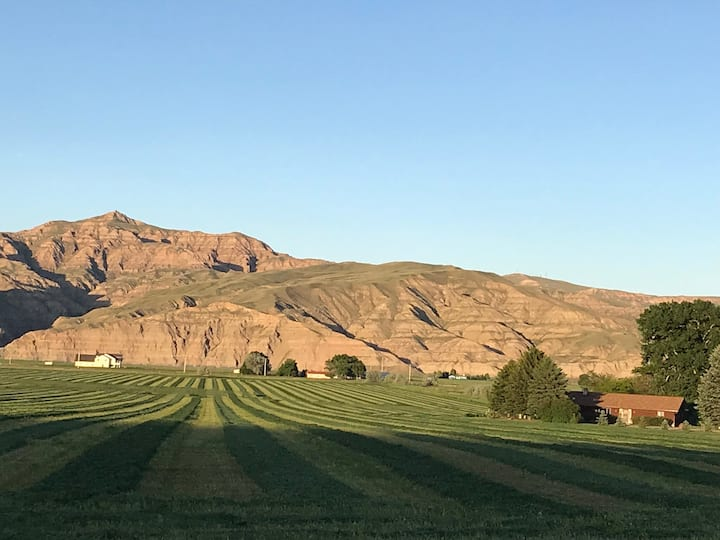 Comfy Ranch with McCullough Peaks view