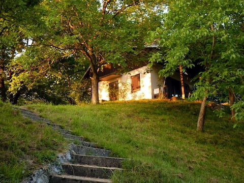 Weekend house at the river Kupa, near the forest