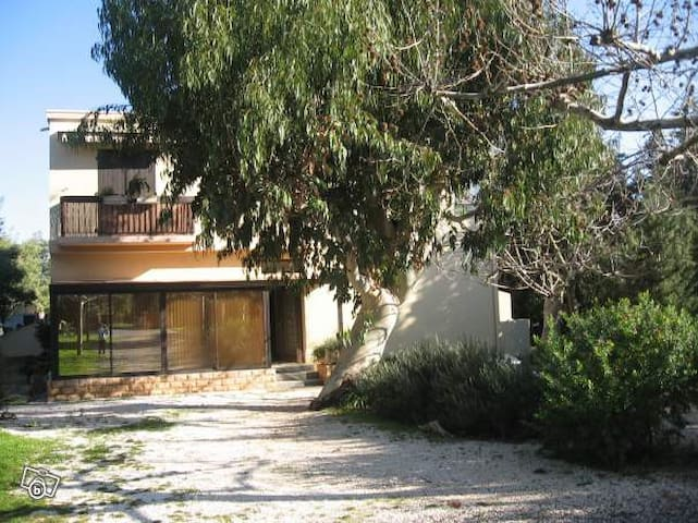 Studio véranda entre eucalyptus et mimosas