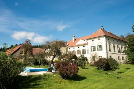 Holiday flat at Schlossgut Gundersdorf - Gundersdorf - 城堡