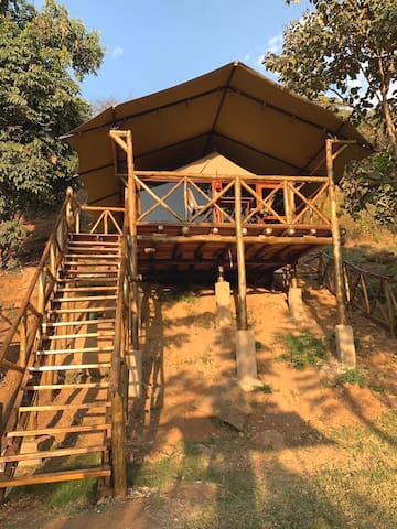 Jangwani Treehouse Fun in the wild
