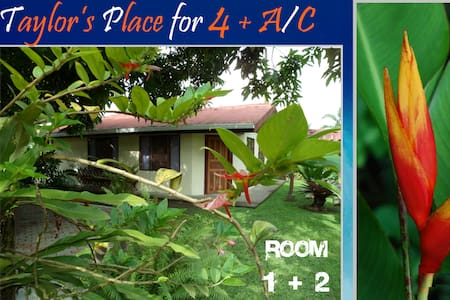 SUN+FUN+A/C for FOUR inTortuguero in 2 ROOMS - Bungalow