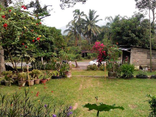 Homestay Ruby Kampung Kata, Batu Kikir - Batu Kikir - Ev