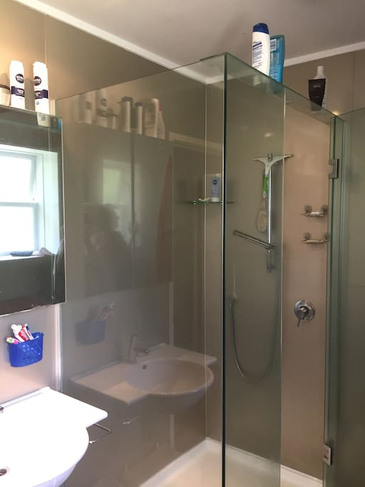 The shower, modern and clean