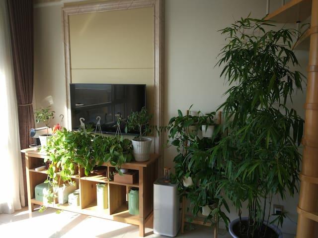 有花有竹的loft度假公寓