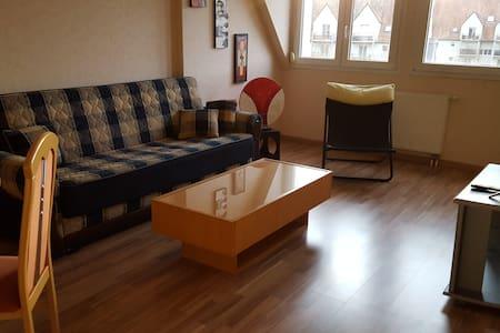 Mignon 2p de 52m² au calme - Molsheim - Wohnung