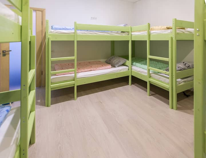 Bed in 6-bed mixed dorm