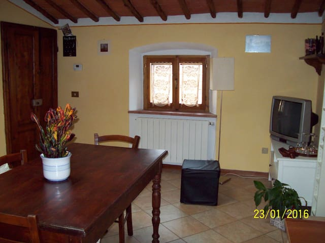 Apartment in the heart of Chianti - Castellina in Chianti - Siena - Appartement