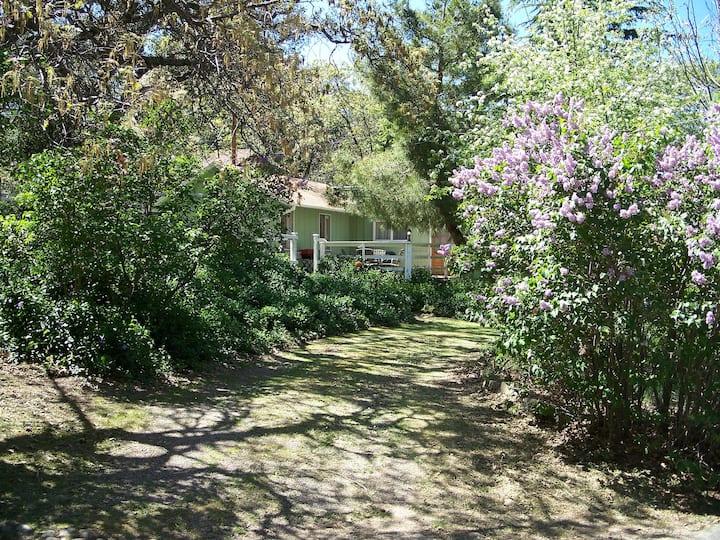 Cathleen's Pet-Friendly Cottage Has Free NETFLIX
