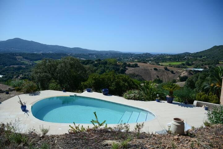 Bas de Villa T3 calme, piscine entourée de maquis