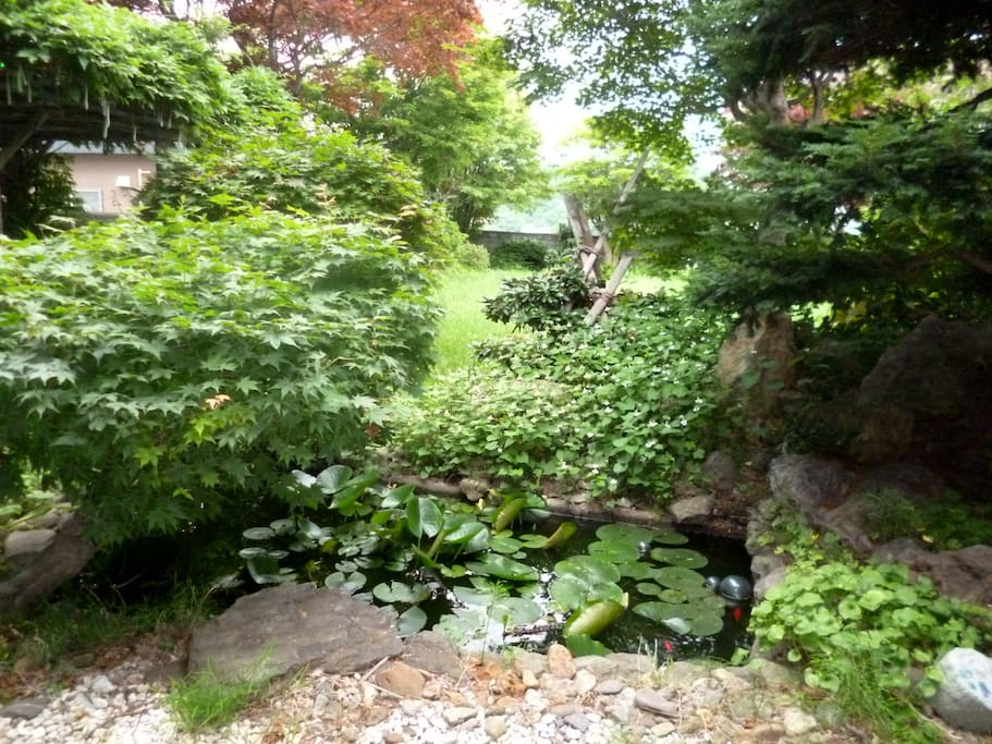 deep woods and huge japanese style garden