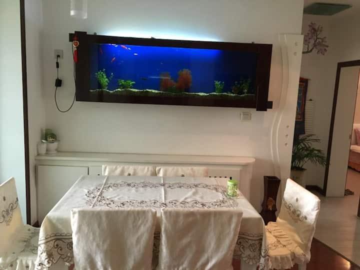 戈壁明珠的温馨小窝 Gobi Pearl cozy home