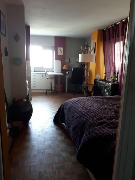 grand studio localisation id ale paris 12 me appartements louer paris le de france france. Black Bedroom Furniture Sets. Home Design Ideas