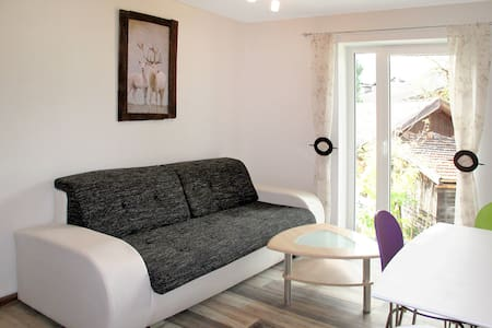 40 m² Apartment Our´s Living - Mittersill - Byt