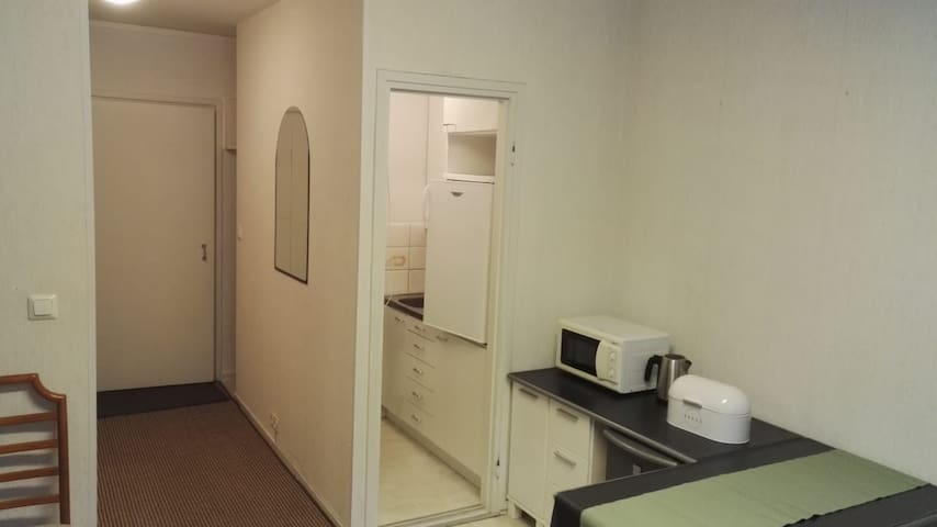 The hall on the right, kitchenette on the left. Picture taken from the living room.