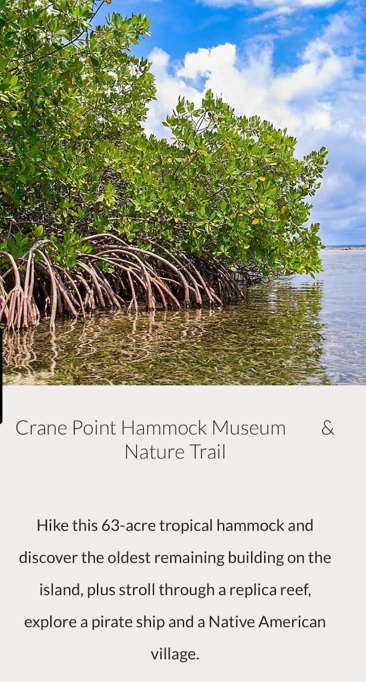 Marathon Key, Florida Keys: July get a way