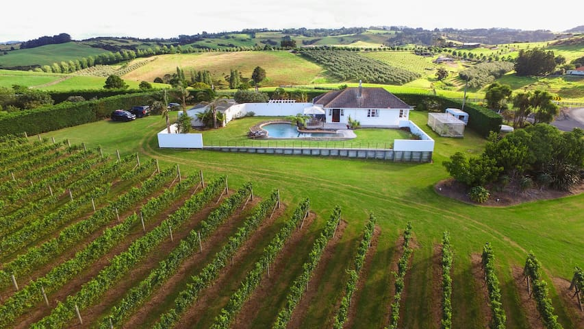 Vineyard Accommodation in Mangawhai