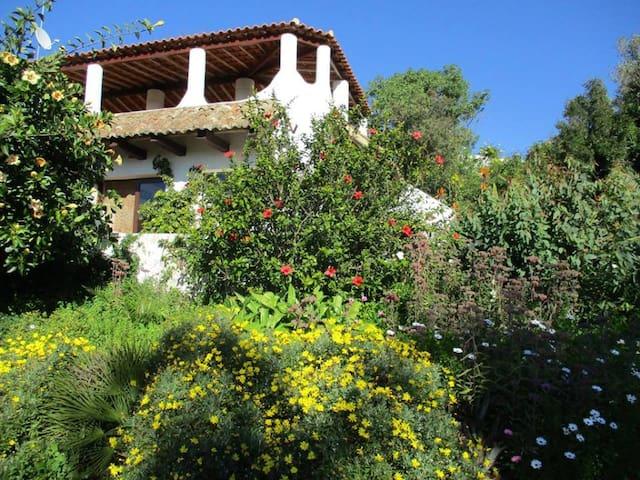 Fazenda das papoilas - Casa Pinheiro - Huisje - Luz - Haus