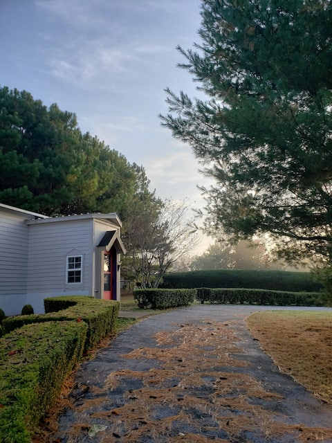 Piney Woods Cottage