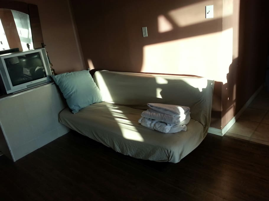 Sofa bed in living room