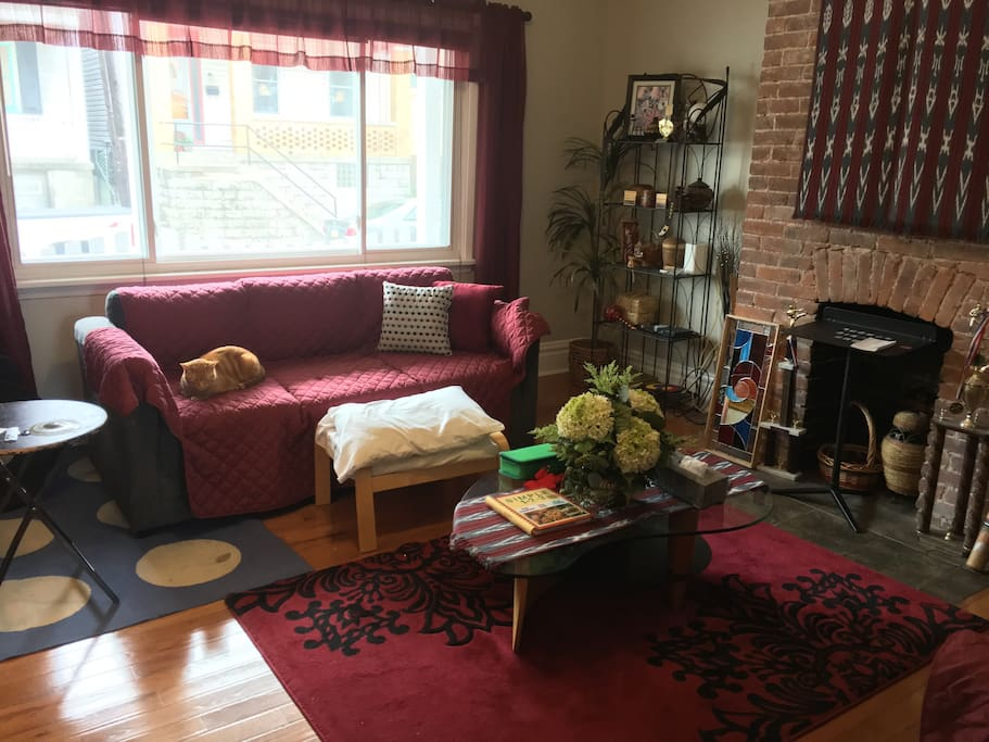 Common living room, complete with cat