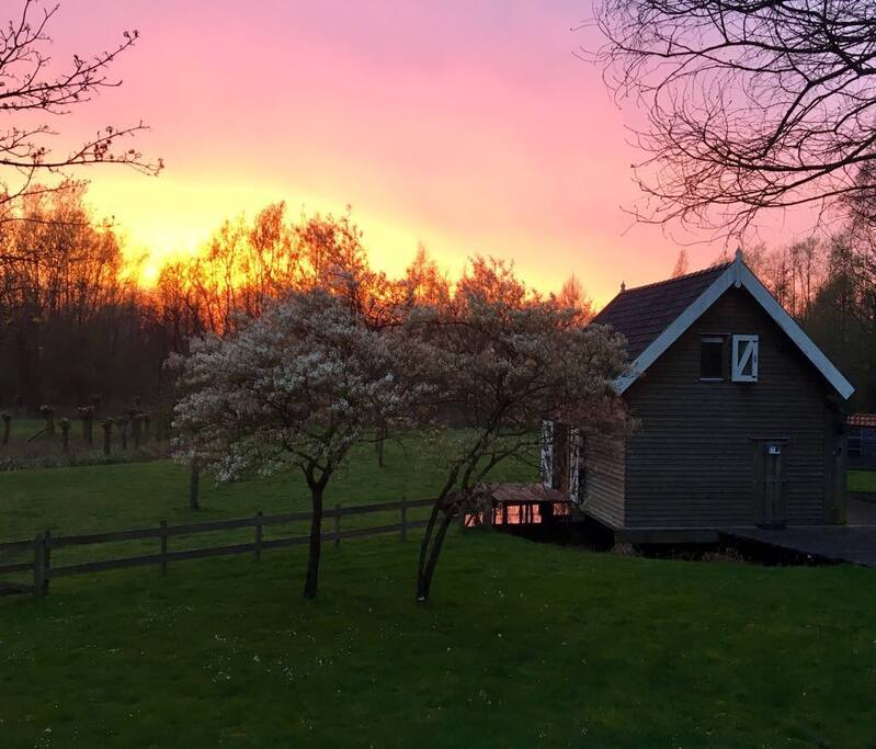 Diefdijk Cottage at sunset. Spring 2017