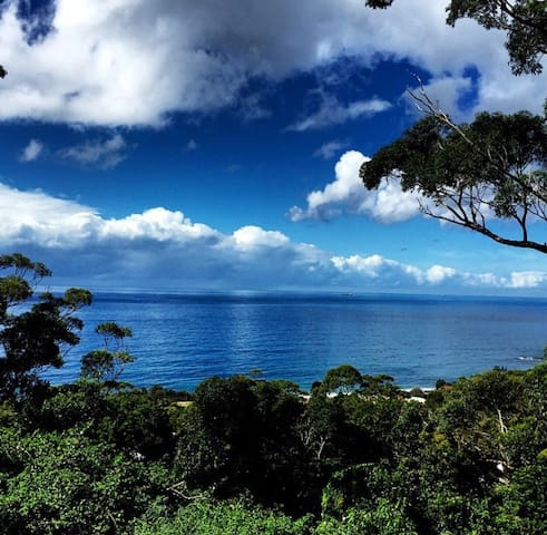 Wombarra Springs  Estate rainforest beach serenity - Scarborough - Byt